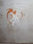 beginning of painting gabi the beagle